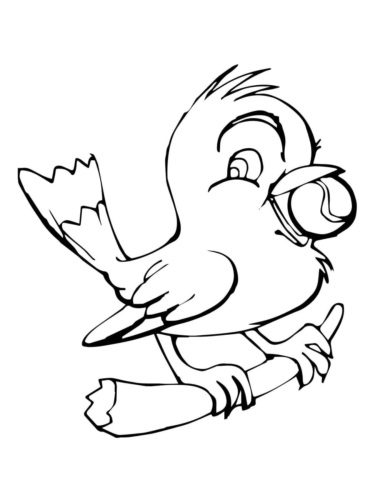 Tổng hợp các bức tranh tô màu con chim cho bé