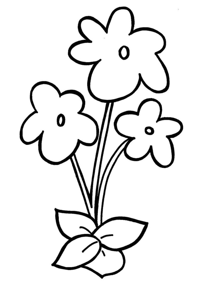 Tổng hợp các bức tranh tô màu hoa mai cho bé