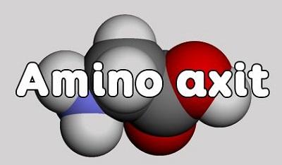 Amino axit: lý thuyết, tính chất hóa học và bài tập amino axit