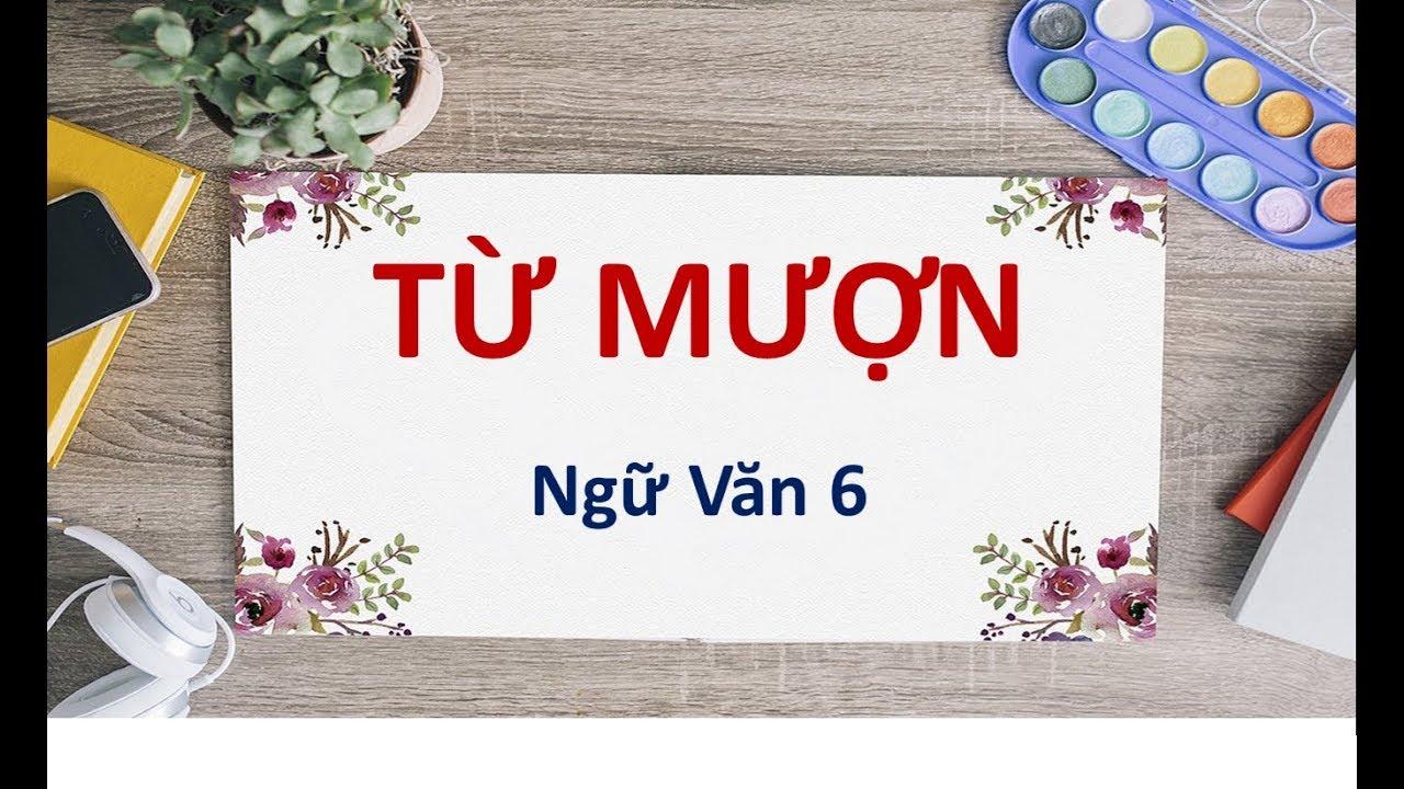 Từ mượn là gì và những điều thú vị của từ mượn trong Tiếng Việt